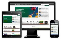 طرح توجیهی طراحی نرم افزار وصفحات وب