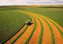 دانلود تحقیق کشاورزی